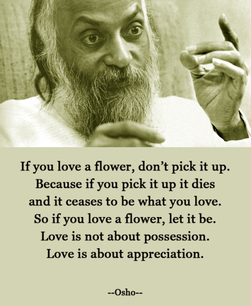 thatonekidwhodoesthings:  LOVE IS ABOUT APPRECIATION