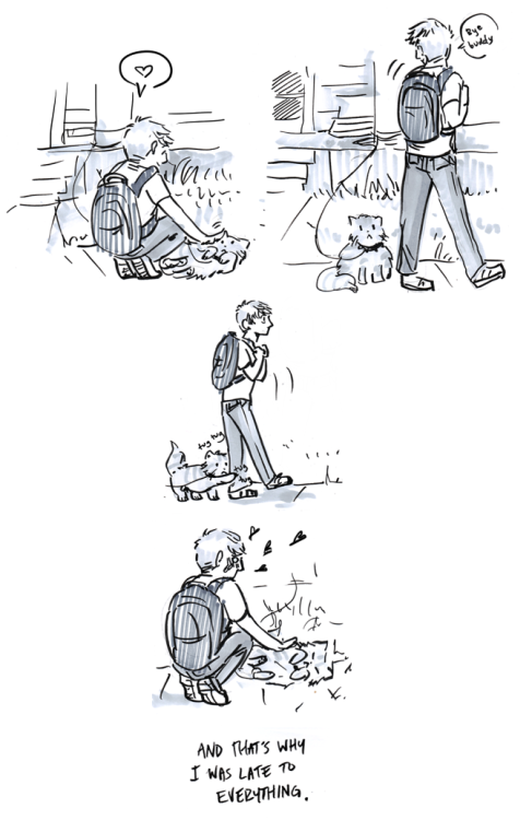 callmekitto:  being friends with cats is difficult