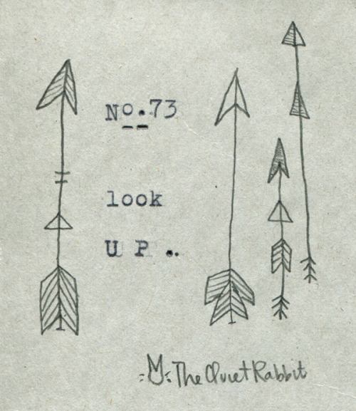 thequietrabbit:  no.73 - look up.