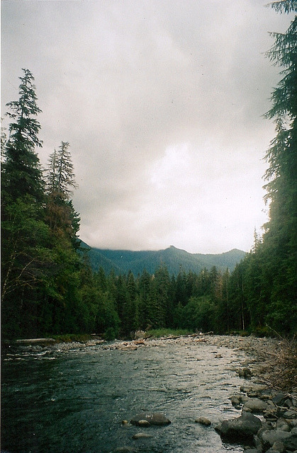 left-nut:  untitled by emma.williams on Flickr.
