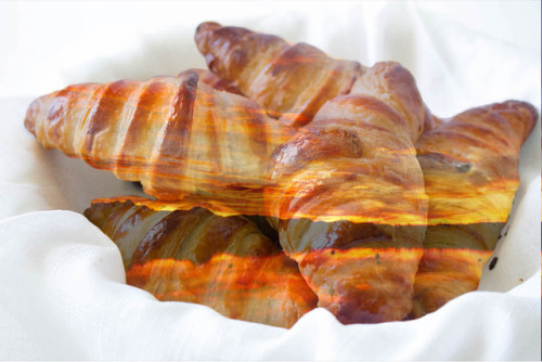 myrddraaleatsyellowsnow: