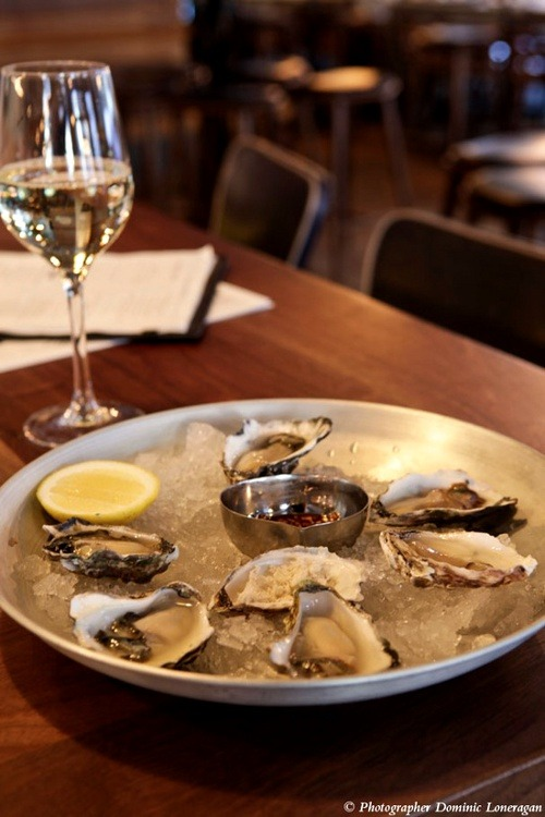 the morrison bar & oyster room | sydney