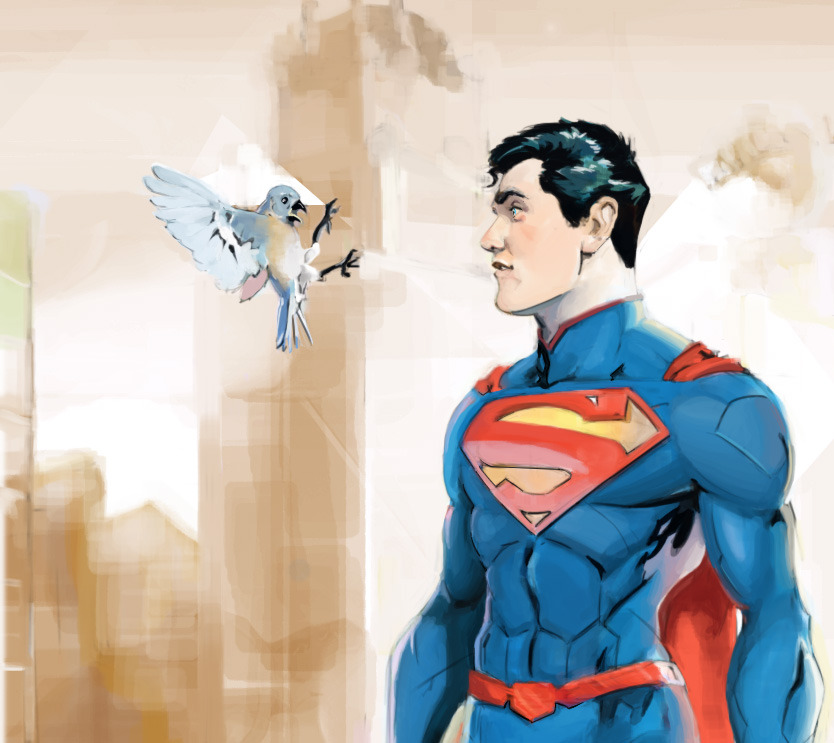 Superman vs Bird by ~samuraiminister