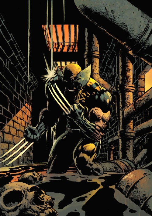 Wolverine by David Finch.