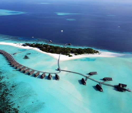 Amazing: Cocoa Island Resort @ Maldives