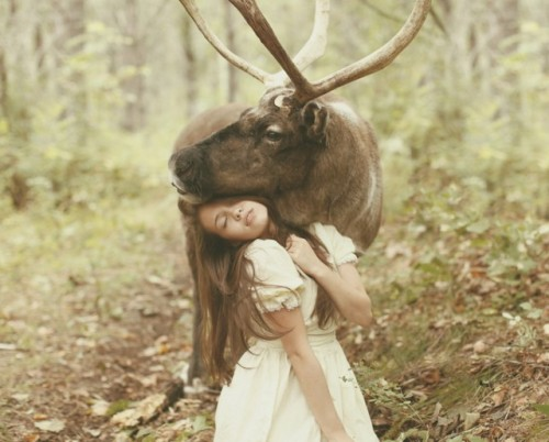 goshto:  Katerina Plotnikova Photography.