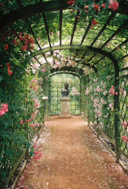 vacants:  Dornburg: Schlossgarten (by zug55)