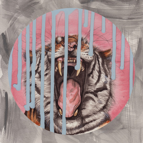 Henrietta Harris - Tiger Translate