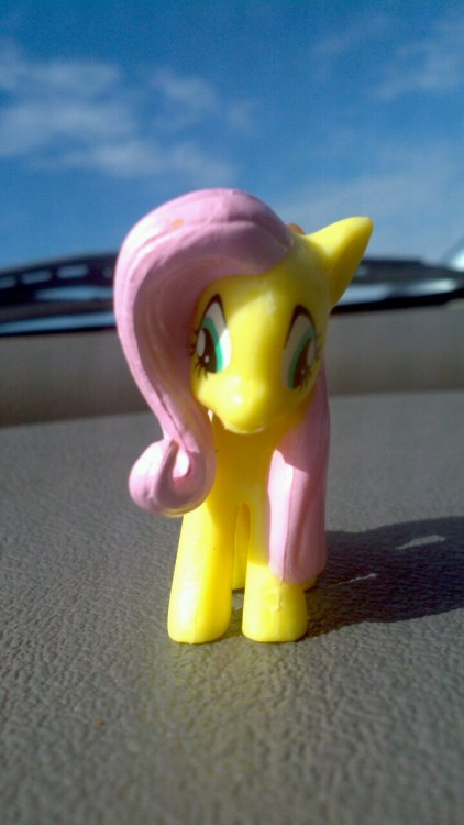 Fluttershy is awful concerned.