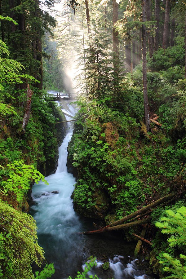 travelingcolors:  Sol Duc Falls, Olympic National Park | Washington (by Pierre LeClerc)