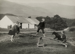 howtoseewithoutacamera:  by William Reid A dog plays on a seesaw with children in Scotland, March 1919. For National Geographic.