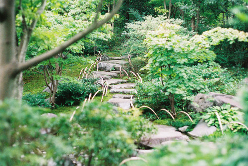 breathlesswanderer:  Garden Walk in Showa Kinen Garden by Baka John on Flickr.