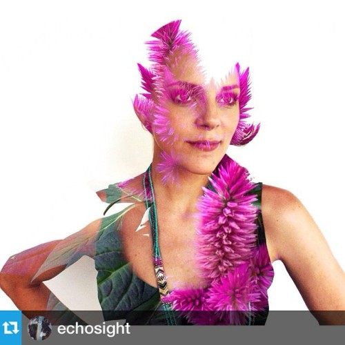 The mashups on @echosight this week by @rdegive and @dylanisbell are crazy good!!