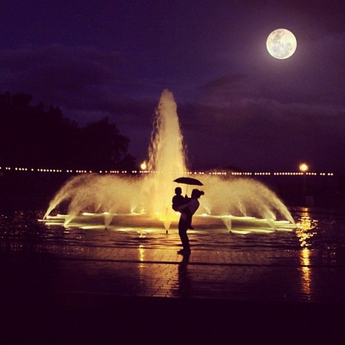 oh-so-coco:  Moonlight at Balboa Park, San Diego.