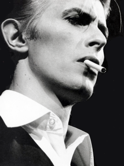 vintagegal:  David Bowie, 1976