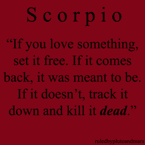 LMAO not exactly my MVNTRA but I know Scorpios like this.. (;