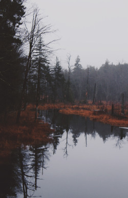 jamasrendirse:  (Emily Boyer Photography)