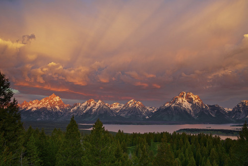 Majestic Morning - Grand Tetons National Park, Wyoming by ernogy on Flickr.