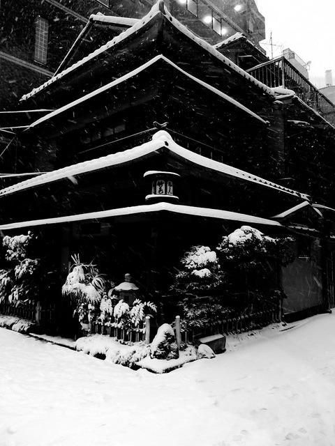 hiromitsu:  2014年 東京の大雪#15 by sunuq on Flickr.
