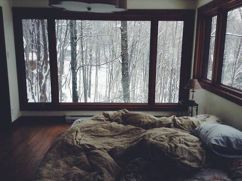 ramonasummers:  That far away place where it can be just us, and the trees and silent nature.