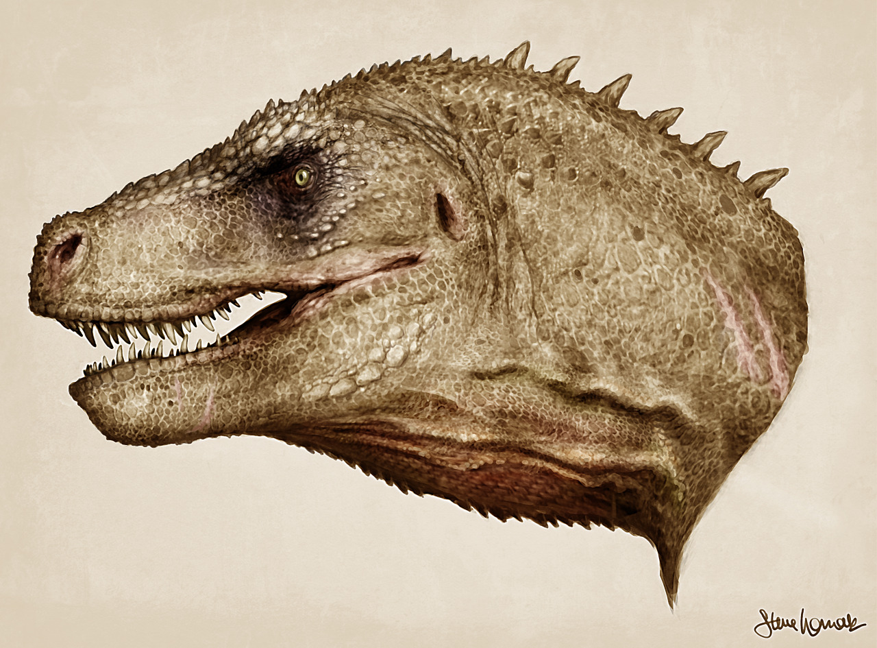 womackart:  Finally finished with the Rex head! Done in Photoshop, I painted and textured directly over the muscle study I did in a previous post. Follow me!