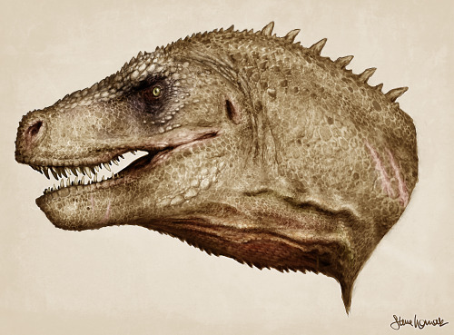 fuckyeahdinoart:  T-Rex head study with skin! Painted and textured directly over the muscle study Follow me! womackart.tumblr.com