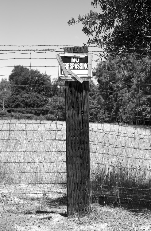 No Trespassing in B&W. Yolo County, 05-04-13.