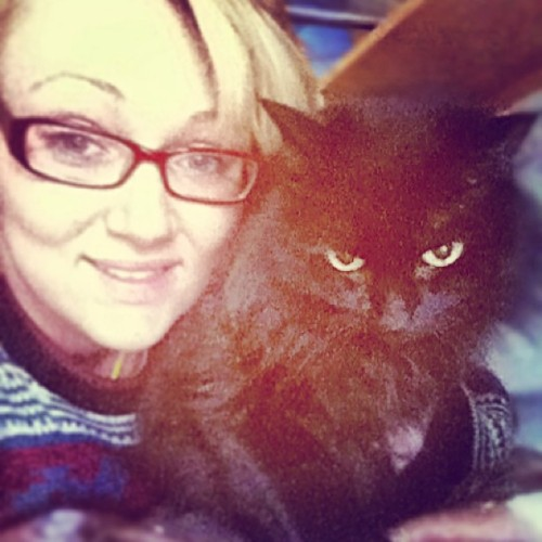 Look at #my #cats #face #omg #evil #me #mylove #love  #petselfie #kittycat #billcosbysweater