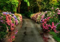 landscape inspiration wisdom prose inspiring quotes