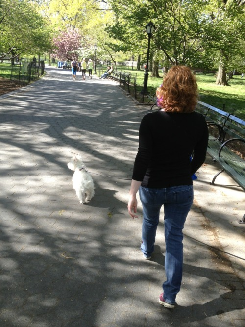 Saturday morning walk in Central Park