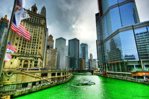 chassant-reverie:  GREEN THEY TURNED IT GREEN I love Chicago.