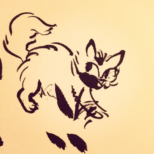 playing with a brush pen #cat #ink