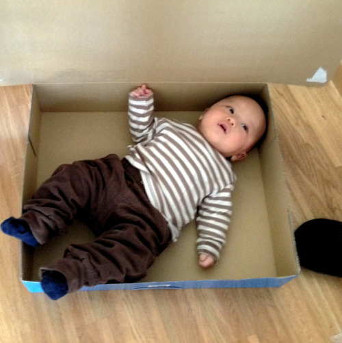 Baby in a box on Flickr.