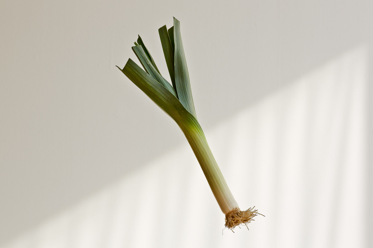 Yesterday we shot food. Long live the flying leek!