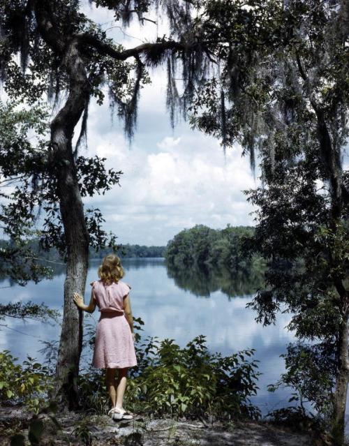 balnibarbi:  Lois Duncan Steinmetz gazing at the Suwannee River by State Library and Archives of Florida http://flic.kr/p/ede3BK
