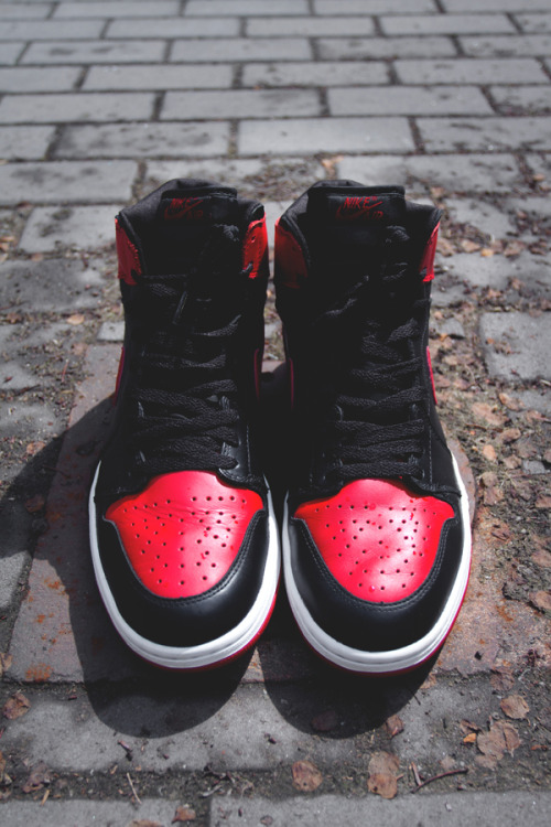 shoepreme:  Fresh Bred