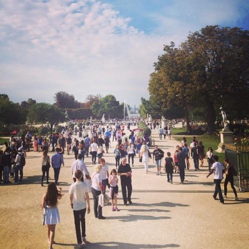 #paris #sun  (à Les Jardins Des Tuileries)