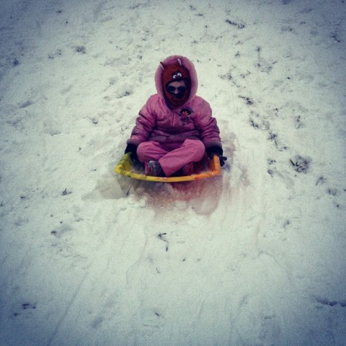 Comin at ya! #snow #sledding #winter #fun