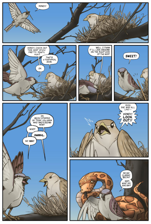 damaximos:  bodyrockbrock:  A bird story. [via]  birds man