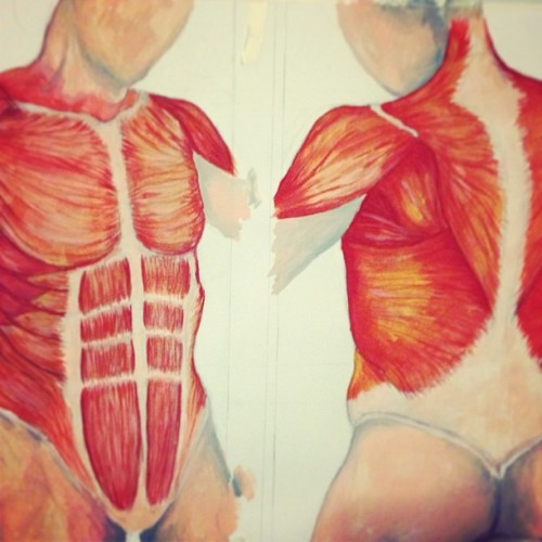Bleck #anatomy #art #watercolor #nosleep