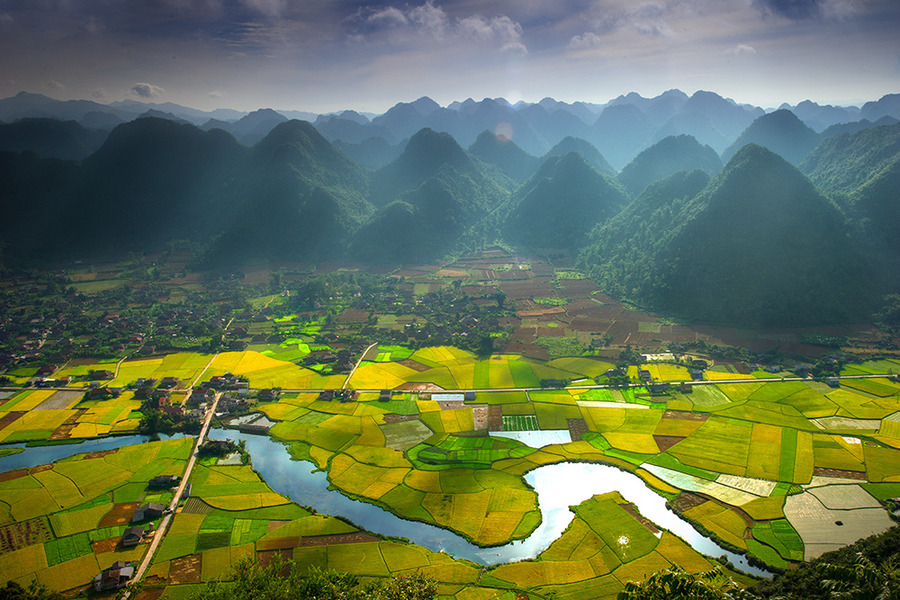 woodendreams:  (by Hai Thinh)