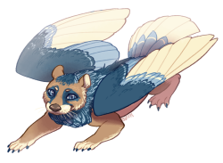 Commission of this really cute design by doodleloser *_* AN OTTERBIRD