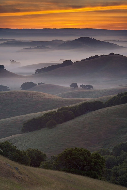 misty layers…