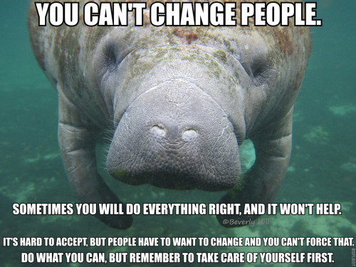 "[Image description: A photograph of a manatee in the sea, facing the camera. TEXT: ""You can't change people. Sometimes you will do everything right, and it won't help. It's hard to accept, but people have to want to change and you can't force that. Do what you can, but remember to take care of yourself first.""]  [image credit]  There are going to be people in your life who need help. And while I think you should help them as best you can, that's the key to it: as best you can. At the end of the day, you're a person. You can provide support and love, but not change. That's up to them.  And sometimes it's going to reach a point where you can't help anymore without hurting yourself. And when that happens, you have to step back and look after yourself too. You are your own first priority."