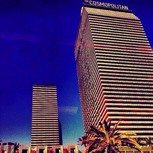 at The Cosmopolitan of Las Vegas