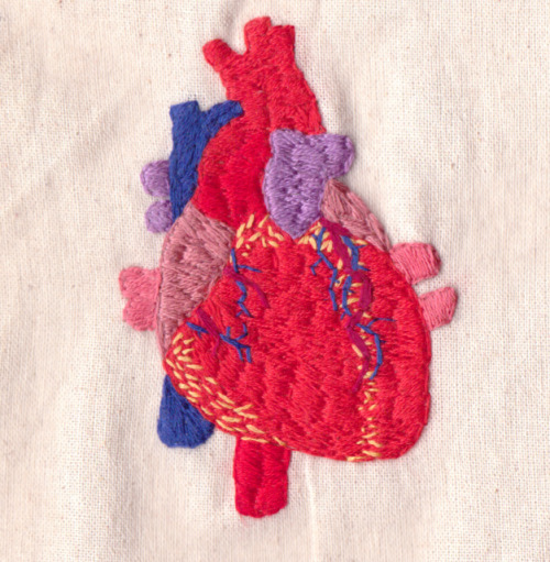 hannahscupofcare:  Human Heart Embroidery on Flickr.