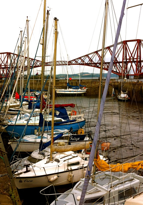 viewscotland:  Habour at South Queensferry, West Lothian
