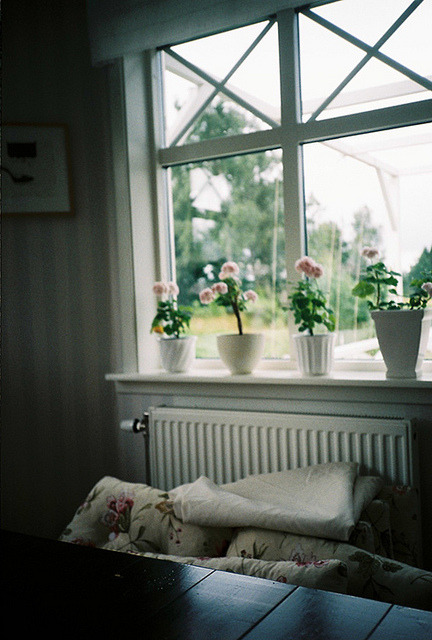ambiants:  untitled by elea te dice hola on Flickr.