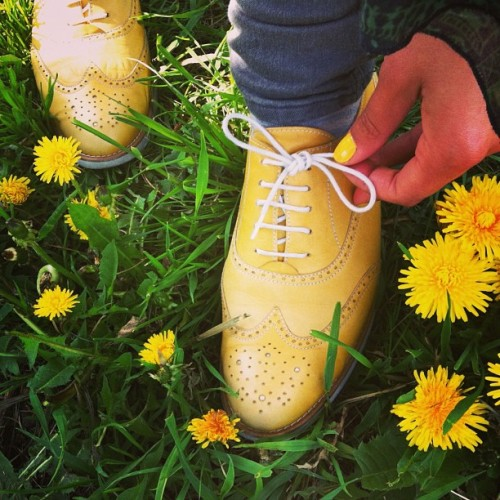 May 7 ~ Double tie your shoe laces and walk on! 🍀 Have a happy & productive Tuesday! #walking to #work #shoes #yellow #dandelion #fashion #walk #fit #fitfam #nature #spring #outdoors #motivation #inspiration #fitspiration #fitspo #oott #flowers #designyourdailylife