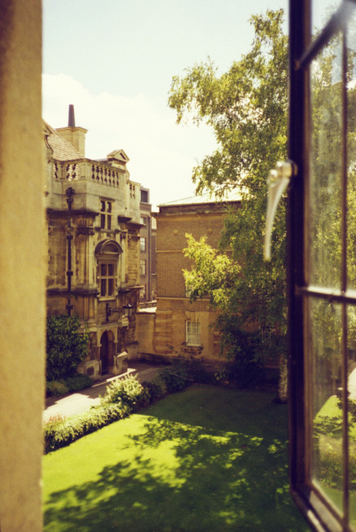 bella-illusione:  cambridge university